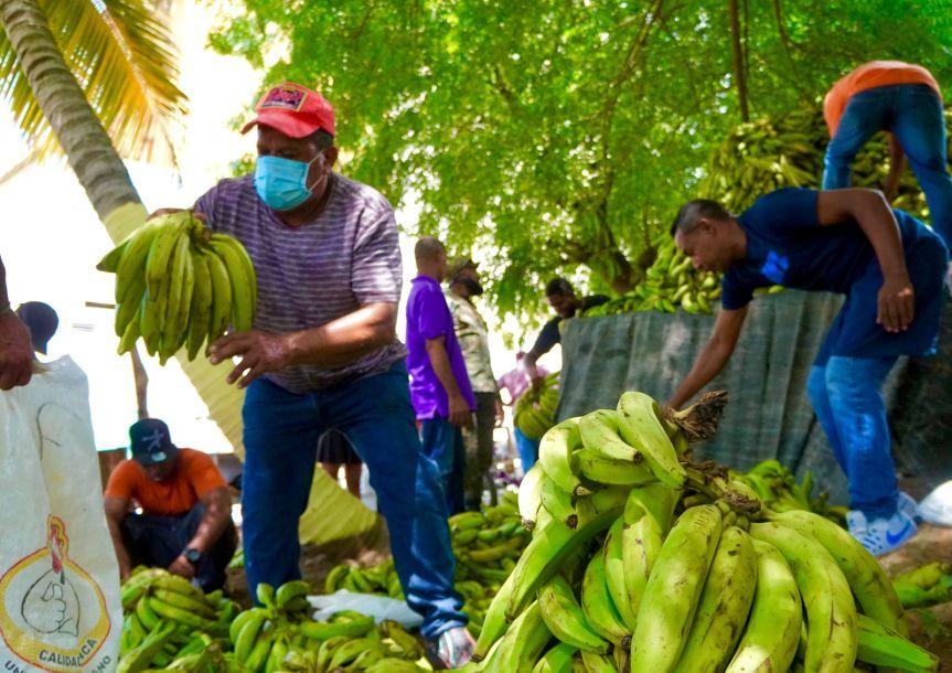 Inespre anuncia venta de plátanos a peso en mercadosproductores